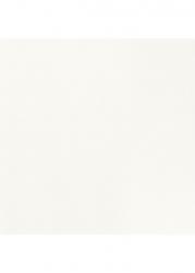 Paradyz Dlažba Elando Bianco Rekt. 50x50