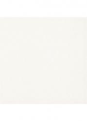 Dlažba Inwest Bialy Gres Glaz. Mat. 19,8x19,8
