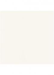 Obklad Bílý Matný 20x20, Investa Bianco Mat. 19,8x19,8