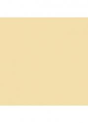 Obklad Inwesta Bezowa Mat. 19,8x19,8