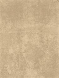 Obklad Rako Patina šedá 25x33 cm, mat