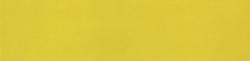 Obklad Ribesalbes Chic Colors amarillo 10x40 cm, lesk