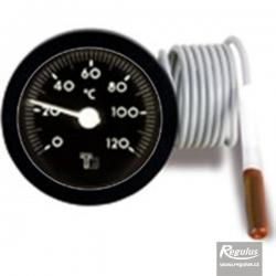 Regulus Teploměr 0-120 stupňů, délka kapiláry 1m 172